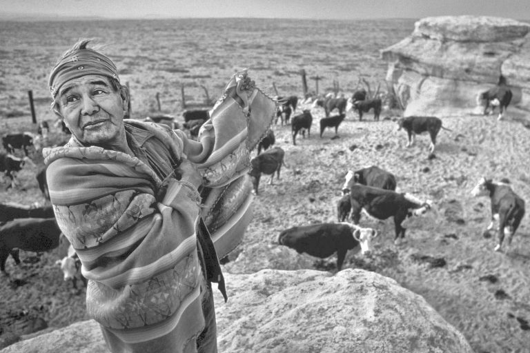 Hopi Indian Cowboy, Willie Coin. Hopi /Navajo Joint Use Area, Arizona